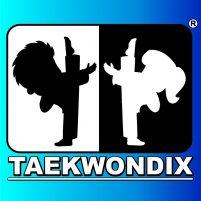 LOGO TAEKWONDIX OFFICIAL 3